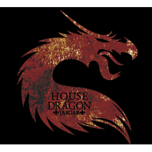 Camiseta House of dragons