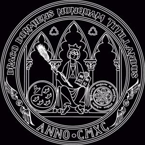 Camiseta Hogwarts UMU