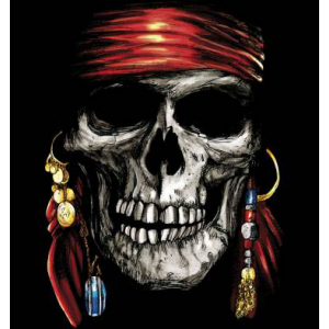 Camiseta Jack Sparrow -...